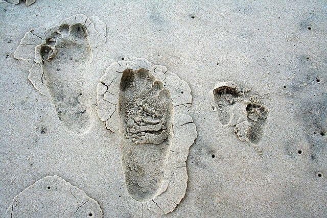 impronte genitore figlio
