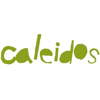 Logo Caleidos